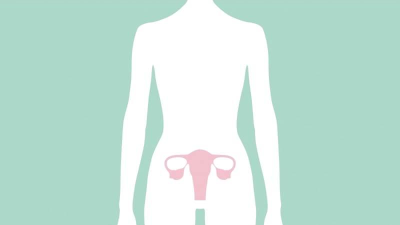 Лечение гормональных сбоев и нарушений при климаксе