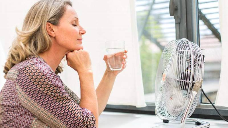 Что пить при климаксе когда бросает в жар