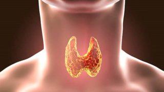 Причины появления гипотериоза в менопаузе