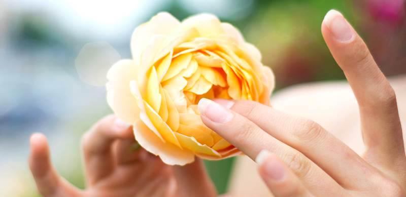 Лечение народными средствами атрофического кольпита в менопаузе